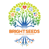 Bright Seeds International Kindergarten